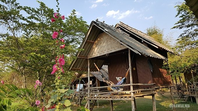 Pai tajlandia domki na palach