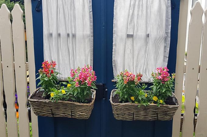 stare drzwi w ogrodzie